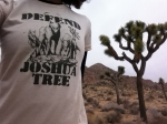 Defend Joshua Tree